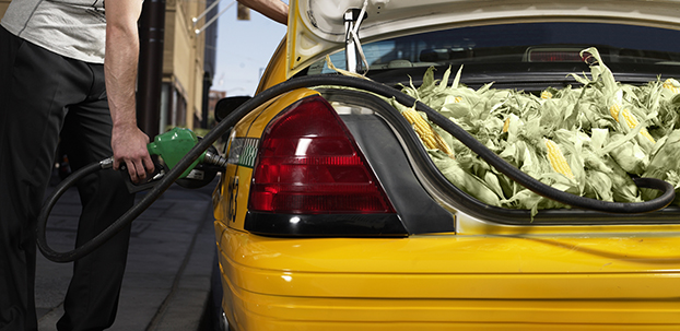 taxi driver filling up with corn fuel